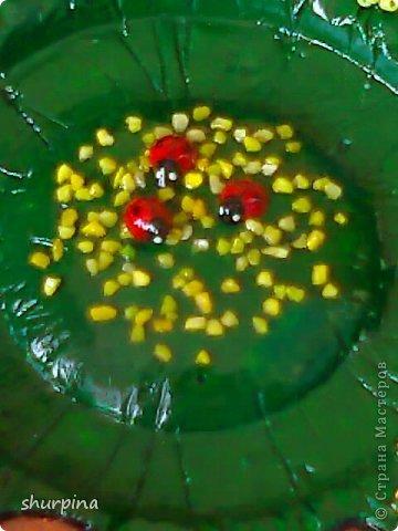 Сказочный гриб-домик фото 32