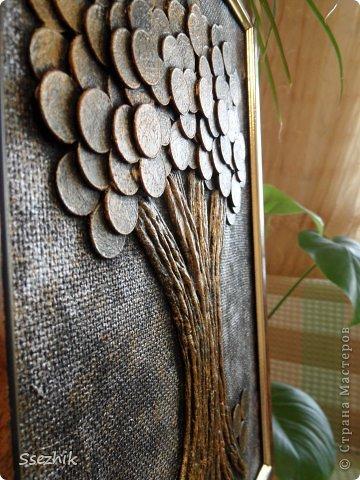 Денежное дерево из купюр своими руками мастер