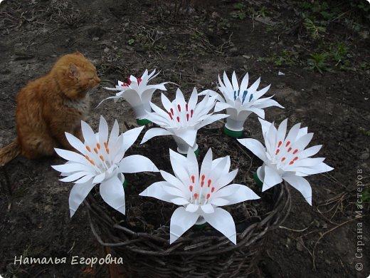 Поделка цветы для сада
