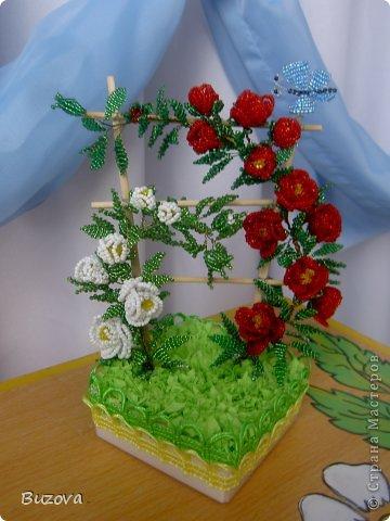 Вьющиеся розы мз бисера