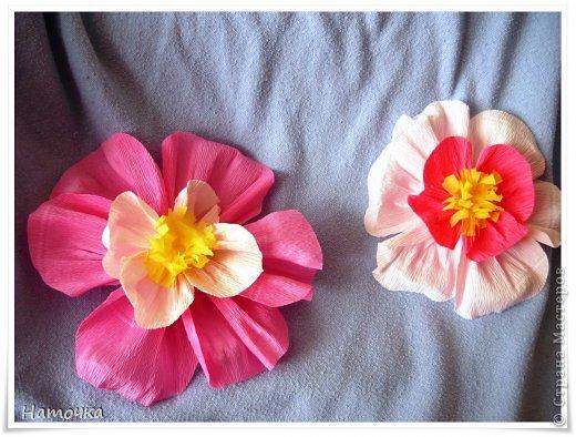 Цветы яблони или сакуры из бумаги