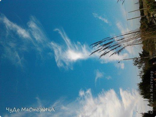 Вот это у нас на природе всё чисто красиво радуга дуга разошлась по небу . Это был наш первый весенний дождь 2012 года . фото 10