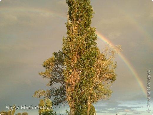 Вот это у нас на природе всё чисто красиво радуга дуга разошлась по небу . Это был наш первый весенний дождь 2012 года . фото 1