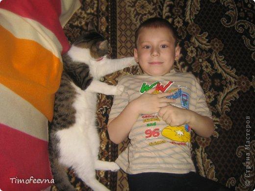 """Привет всем гостям моей странички и особенно любителям кошек!  Да, я обожаю кошек, но сама котика завела всего полгода назад, взяли его по объявлению и назвали его Антоша. Как и у любых котов, у нашего Антошки есть свои особенные черты характера. Одна из них странновата для кота, он у нас почти вегетерианец :) мясо не ест, рыбу редко, но вот если учует запах рагу, вареной моркови или моей любимой стручковой фасоли, то весь на """"мяв"""" изойдется, вилку будет на лету из рук выбивать, лишь бы ему тоже в тарелочку наложили.  Вот так его и подкармливаем овощами, а недавно решили с ребятишками ещё и травку для него вырастить, специальную, кошачью. Подумали, что и полезно ему будет и приятно котику сделаем. и не прогадали. фото 11"""