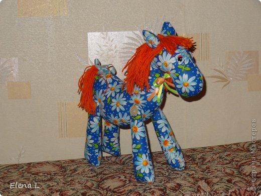 Внучке годик.  Уже давно изображает как  лошадка скачет, а лошадки только на картинках.  Захотелось порадовать малышку.
