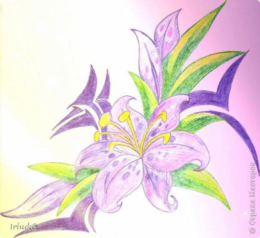 мои рисунки (часть2) фото 1