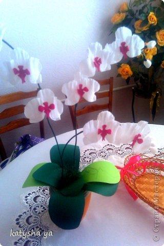 Как из гофрированной бумаги сделать орхидею