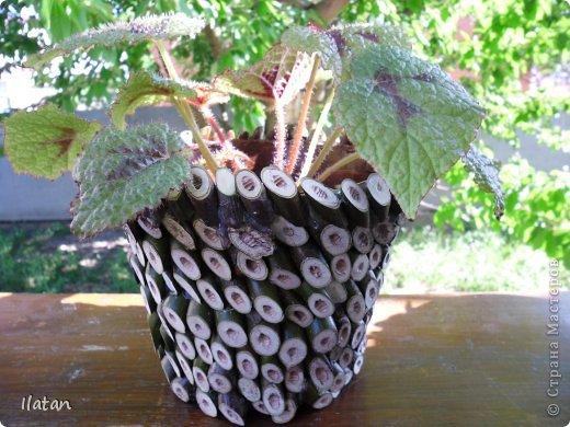 """Добрый день или вечер мои хорошие давние знакомые и не знакомые :) подружки и друзья нашей прекрасной Страны Мастеров!!!!  Многие из Вас знают как я люблю цветы....а для них естественно нужны """"одежки"""", ну в смысле горшочки..... Весна, обрезка деревьев, натолкнули меня на создание сего чуда.... Обычные пластмасовый горшок, термопистолет, срезы  веточек час свободного времени и вуаля....очередная красота в моем арсенале! Смотрите....."""
