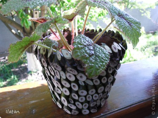 """Добрый день или вечер мои хорошие давние знакомые и не знакомые :) подружки и друзья нашей прекрасной Страны Мастеров!!!!  Многие из Вас знают как я люблю цветы....а для них естественно нужны """"одежки"""", ну в смысле горшочки..... Весна, обрезка деревьев, натолкнули меня на создание сего чуда.... Обычные пластмасовый горшок, термопистолет, срезы  веточек час свободного времени и вуаля....очередная красота в моем арсенале! Смотрите.....  фото 2"""