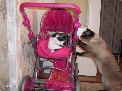 Это МЭни мама качает своего сына Фильку! фото 1