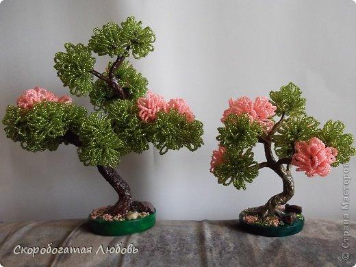Бисероплетение - Цветущие бонсаи из бисера.
