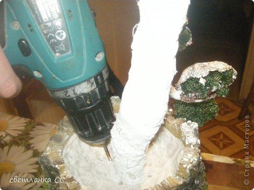 Ремонт сломавшегося ствола дерева фото 4