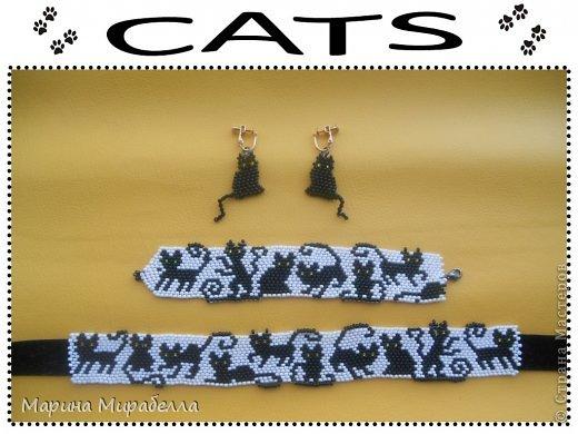 CATS со схемой Бисер Нитки
