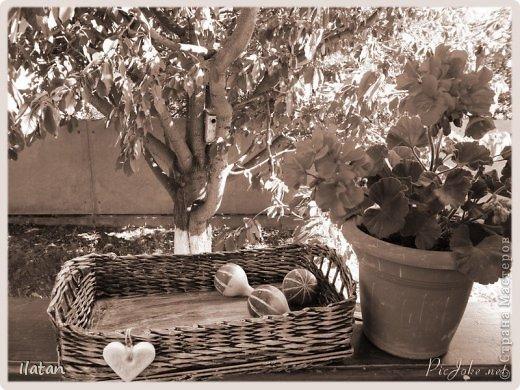 День добрый, мои хорошие жители Страны!!!!!  Всех рада видеть у себя в гостях!  А я все плету потихоньку...  Сегодня поделюсь с Вами очередной плетеночкой..... :)) фото 12