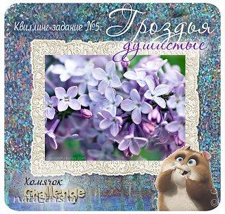 Здравствуйте,хочу поучаствовать в конкурсе  http://homyachok-scrap-challenge.blogspot.com/2013/05/grozdja-dushistie.html фото 11