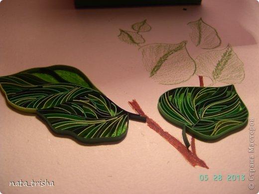 Здравствуйте,хочу поучаствовать в конкурсе  http://homyachok-scrap-challenge.blogspot.com/2013/05/grozdja-dushistie.html фото 4