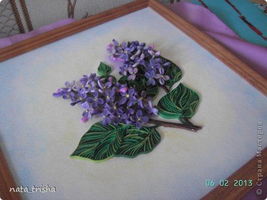 Здравствуйте,хочу поучаствовать в конкурсе  http://homyachok-scrap-challenge.blogspot.com/2013/05/grozdja-dushistie.html фото 7