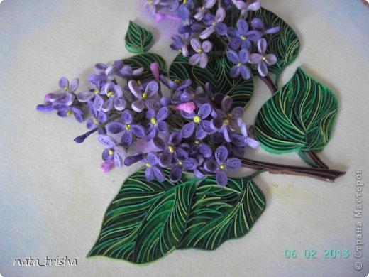 Здравствуйте,хочу поучаствовать в конкурсе  http://homyachok-scrap-challenge.blogspot.com/2013/05/grozdja-dushistie.html фото 9