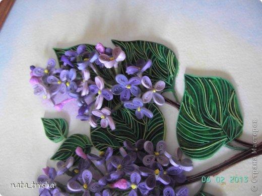 Здравствуйте,хочу поучаствовать в конкурсе  http://homyachok-scrap-challenge.blogspot.com/2013/05/grozdja-dushistie.html фото 10