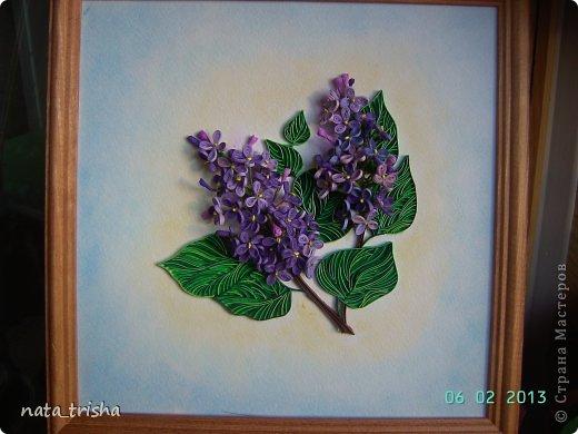 Здравствуйте,хочу поучаствовать в конкурсе  http://homyachok-scrap-challenge.blogspot.com/2013/05/grozdja-dushistie.html фото 1