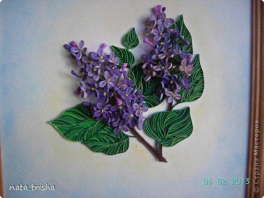 Здравствуйте,хочу поучаствовать в конкурсе  http://homyachok-scrap-challenge.blogspot.com/2013/05/grozdja-dushistie.html фото 2
