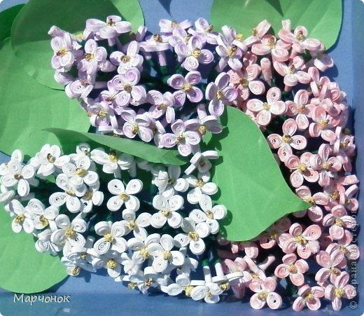 Очередная сиренька )) Лебеди нарисованы пастелью. фото 3