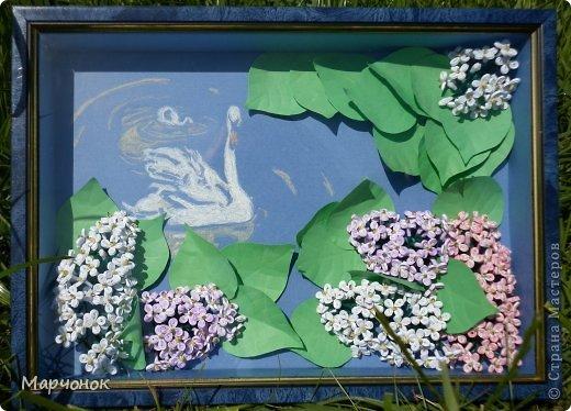 Очередная сиренька )) Лебеди нарисованы пастелью. фото 1