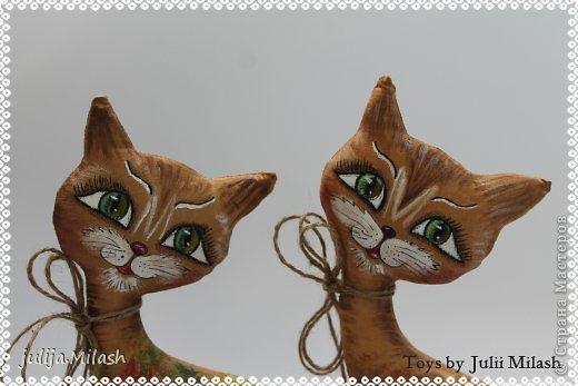 Кофейная кошка