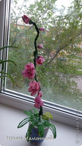 Бисероплетение орхидея Бисер Гипс Гуашь Проволока.