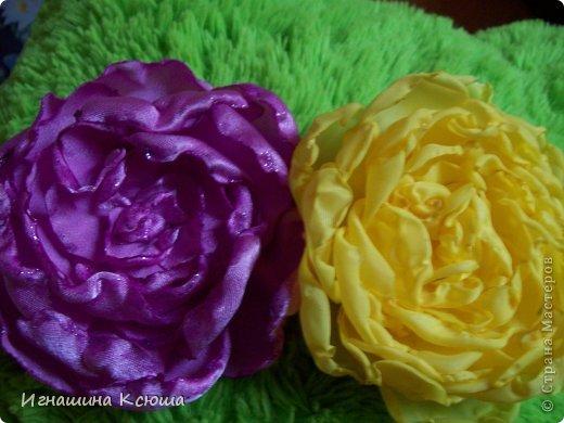 этот цветок расцвёл на шляпке у дочери фото 3