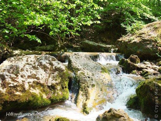 Окруженная со всех сторон горными хребтами и заснеженными вершинами,горная Адыгея похожа на громадную чашу,заполненную до краев сокровищами природы. фото 14
