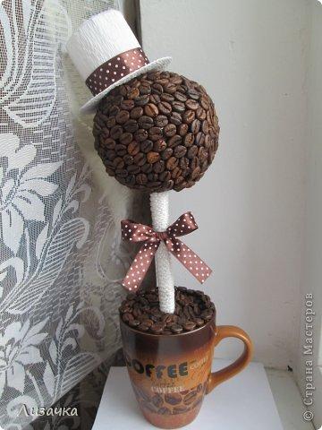 Топиарий из кофейное дерево своими руками мастер класс