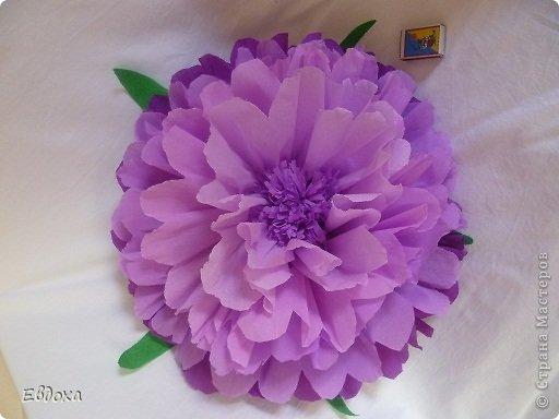 Большие объемные цветы из гофрированной бумаги своими руками