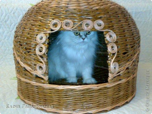 Всем доброго дня.Коллега на работе заказала домик для своего котика.Кот большой-8 кг.Домик,соответственно,тоже немаленький-диаметр 52 см,высота купола 37 см.Цвет орех и разведенный орех.Трубочки толстые,крутила на спицу №3 фото 6