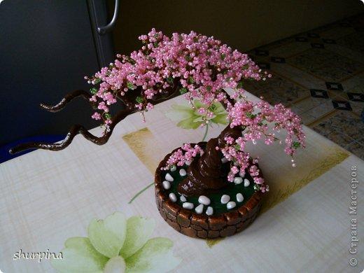 wp_000484 Мастер-класс по Сакуре из бисера своими руками: как сплести дерево со схемой, фото и видео