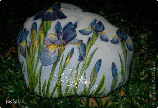 """Доброй ночи!!! С наступлением лета, многие жительницы нашей Страны показывает чудесные цветники на своих садовый участках. Увы, на моей даче, пока, я этим похвастаться не могу, а хоцца красоты!!!!! Вышла из положения таким образом: гуляя с дитями по окрестностям нашла """"клад""""-валуны и каменюшки, что могла прихватила в колясоку, что не смогла забросала травкой (а вдруг еще кому надо). Местные мужики с явным недоумением смотрели,как я бороздила поле, так как промахнулась с местом запрятывания клада, и перла валунок в машину, хотя после того,как я одна - девушка,вместе с мужской кодлой,ловила экраном уклейку и тащила ведро полное этой рыбины из низины,где у нас речка, в гору домой, они не особо удивились, что с нее возьмешь, то с рыбиной, то с камнями, то с палками))))))) Короче отсупила я от темы. Решила создать на участке хотя бы такой цветничок. Это большой валунок, взвесила его дома-6,5 кг оказался. Салфетку мне прислала из Израиля-Анечка (Marfushka), за что ей низкий поклон, уж очень она мне нравится и камень с ней мне очень нравится, хоть дома оставляй и любуйся. Покрыла 3 видами лака:акриловый паркетный,акриловый для бань и саун и автолак. фото 1"""