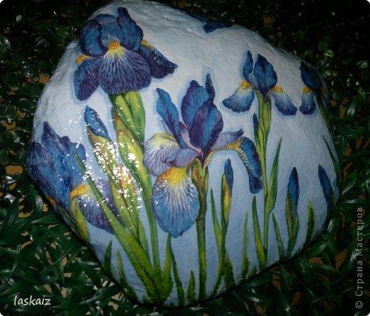 """Доброй ночи!!! С наступлением лета, многие жительницы нашей Страны показывает чудесные цветники на своих садовый участках. Увы, на моей даче, пока, я этим похвастаться не могу, а хоцца красоты!!!!! Вышла из положения таким образом: гуляя с дитями по окрестностям нашла """"клад""""-валуны и каменюшки, что могла прихватила в колясоку, что не смогла забросала травкой (а вдруг еще кому надо). Местные мужики с явным недоумением смотрели,как я бороздила поле, так как промахнулась с местом запрятывания клада, и перла валунок в машину, хотя после того,как я одна - девушка,вместе с мужской кодлой,ловила экраном уклейку и тащила ведро полное этой рыбины из низины,где у нас речка, в гору домой, они не особо удивились, что с нее возьмешь, то с рыбиной, то с камнями, то с палками))))))) Короче отсупила я от темы. Решила создать на участке хотя бы такой цветничок. Это большой валунок, взвесила его дома-6,5 кг оказался. Салфетку мне прислала из Израиля-Анечка (Marfushka), за что ей низкий поклон, уж очень она мне нравится и камень с ней мне очень нравится, хоть дома оставляй и любуйся. Покрыла 3 видами лака:акриловый паркетный,акриловый для бань и саун и автолак. фото 2"""