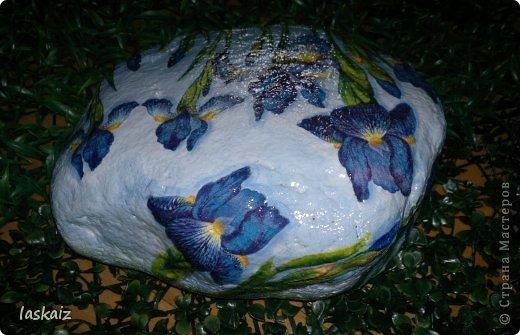 """Доброй ночи!!! С наступлением лета, многие жительницы нашей Страны показывает чудесные цветники на своих садовый участках. Увы, на моей даче, пока, я этим похвастаться не могу, а хоцца красоты!!!!! Вышла из положения таким образом: гуляя с дитями по окрестностям нашла """"клад""""-валуны и каменюшки, что могла прихватила в колясоку, что не смогла забросала травкой (а вдруг еще кому надо). Местные мужики с явным недоумением смотрели,как я бороздила поле, так как промахнулась с местом запрятывания клада, и перла валунок в машину, хотя после того,как я одна - девушка,вместе с мужской кодлой,ловила экраном уклейку и тащила ведро полное этой рыбины из низины,где у нас речка, в гору домой, они не особо удивились, что с нее возьмешь, то с рыбиной, то с камнями, то с палками))))))) Короче отсупила я от темы. Решила создать на участке хотя бы такой цветничок. Это большой валунок, взвесила его дома-6,5 кг оказался. Салфетку мне прислала из Израиля-Анечка (Marfushka), за что ей низкий поклон, уж очень она мне нравится и камень с ней мне очень нравится, хоть дома оставляй и любуйся. Покрыла 3 видами лака:акриловый паркетный,акриловый для бань и саун и автолак. фото 4"""