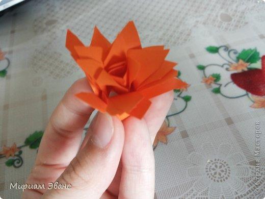 Красивые цветы получатся в конце! фото 8