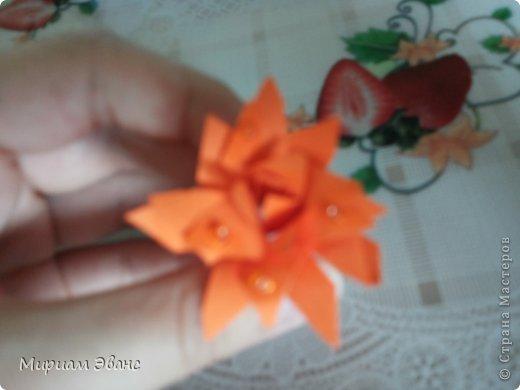 Красивые цветы получатся в конце! фото 9
