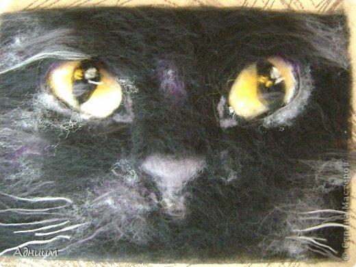 Этот котяра  или, вернее, его взгляд, помещён в рамочку размером 20 на 30 и повешен на стену-смотрится просто классно)) Работа выполнена  в технике шерстяная акварель-послойное выкладывание шерсти.