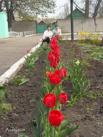 Это мой класс - Влад, Оля, Саша, Ярик, Сережка. И на переднем плане - Наташка и Валик. фото 16