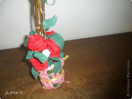 Топиарий  розы. фото 4