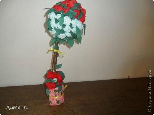 Топиарий  розы. фото 1