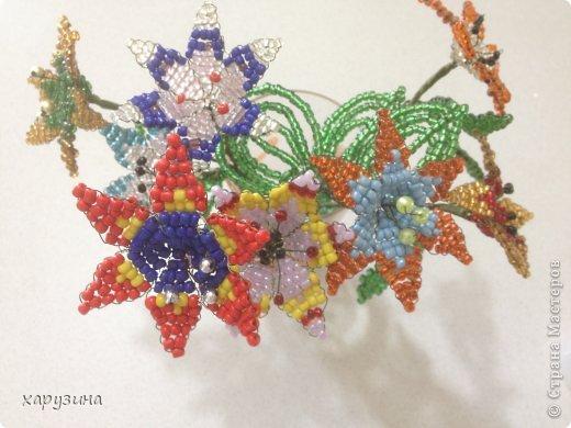 Цветочный фейерверк. фото 3