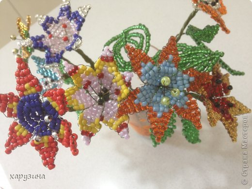 Цветочный фейерверк. фото 1
