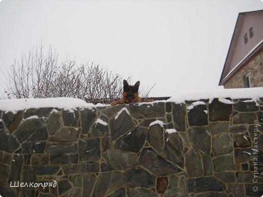 Зима была очень долгая, но очень красивая. фото 6