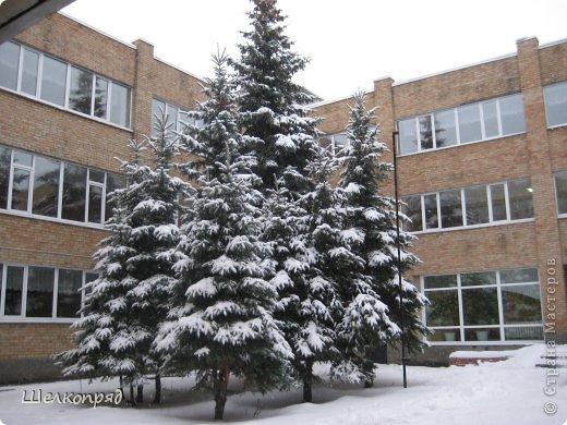Зима была очень долгая, но очень красивая. фото 8