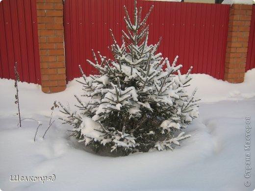 Зима была очень долгая, но очень красивая. фото 31