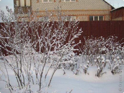 Зима была очень долгая, но очень красивая. фото 32